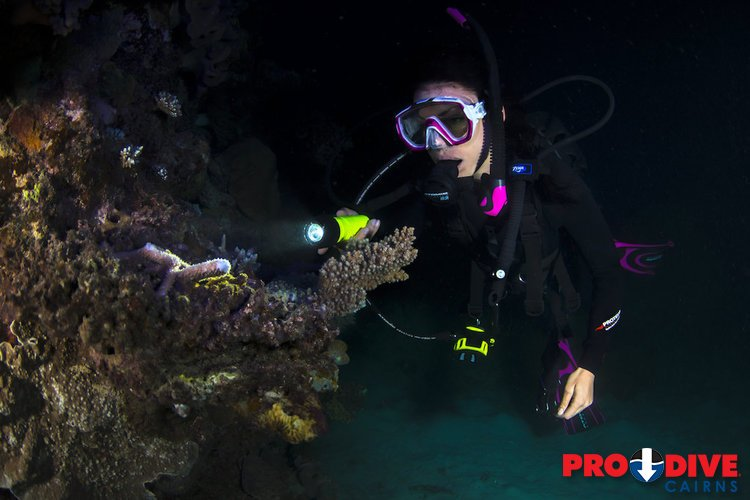 Nitrox Course 3 Day Great Barrier Reef Liveaboard Pro Dive